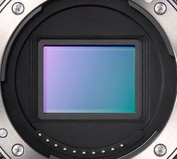 Sony NEX-5: полевой тест