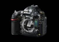 Nikon D800. Обзор камеры
