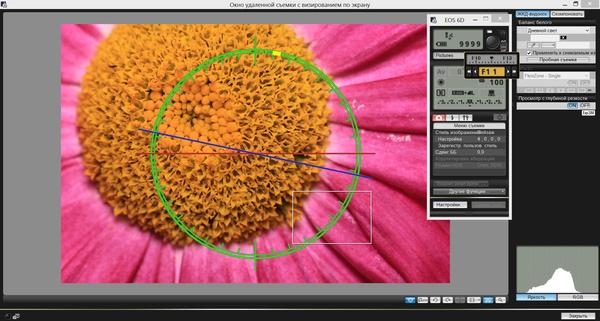 Canon EOS 6D: неделя с экспертом