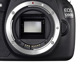 Тест Canon EOS 1200D