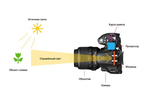 Как устроен фотоаппарат и какие бывают фотоаппараты