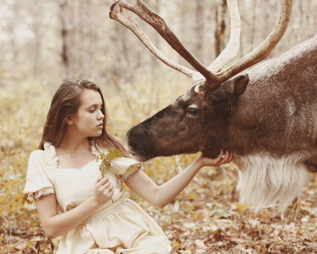 Краткий гид по работе с животными от Катерины Плотниковой