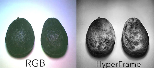 Дешевая гиперспектральная камера HyperCam снимает то, чего мы не видим