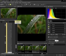Обработка RAW в Nikon Capture NX-D. Знакомство с программой и базовые приёмы