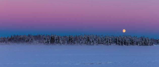 Дыхание зимы на снимках финского фотографа Jari Ehrström