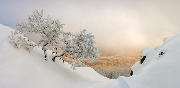 Самые красивые зимние пейзажи