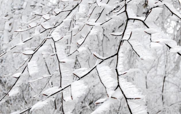 Зима в деталях