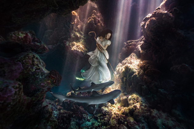 Невероятные подводные фото Бенджамина Фон Вонга