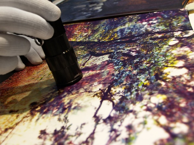 В Галерее Классической Фотографии состоится презентация лаборатории CibaChrome