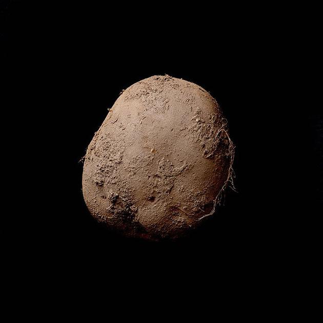 Фотография картофелины продана за рекордную сумму