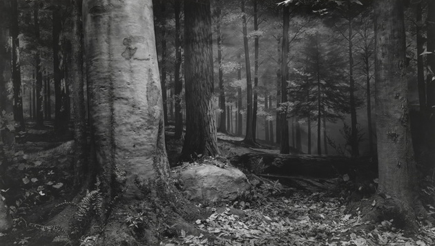 Выставка Хироси Сугимото в Мультимедиа Арт Музее