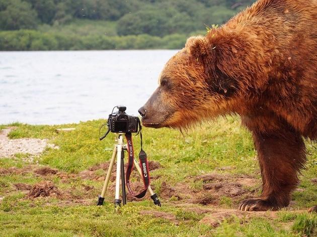 Фотовыставка «Первозданная Россия. Избранное»