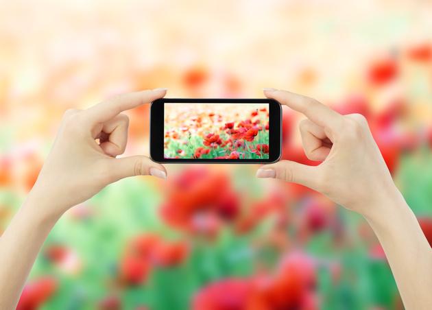 Фотоконкурс с призами от SanDisk