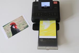 Фотопринтер Canon SELPHY CP1200: готовый фотоальбом за полчаса