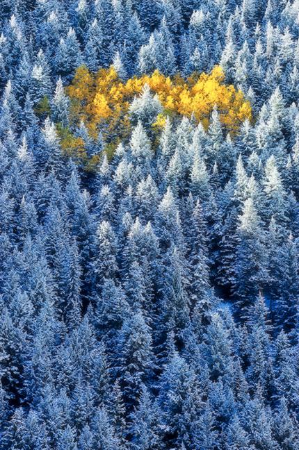 Невероятные пейзажи Мей Ксю