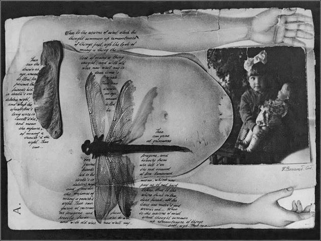 Галерея Классической Фотографии присоединится к международной акции «Ночь в музее»