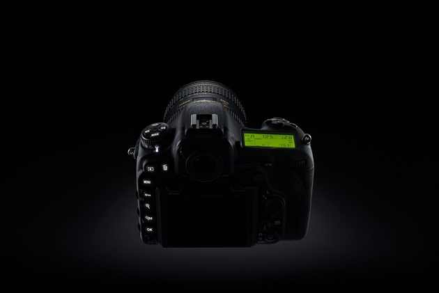 Nikon D500. Неделя с экспертом