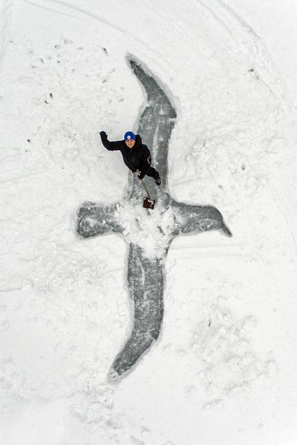 «Чайка»: арт-проект подо льдом