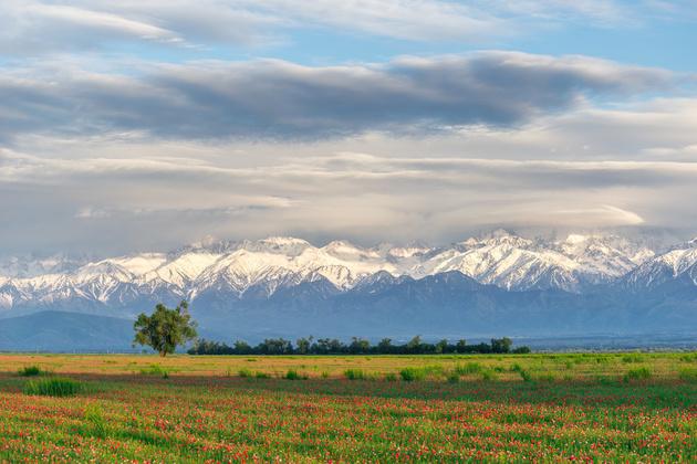 Фотовыставка «Казахстан – страна великой степи»