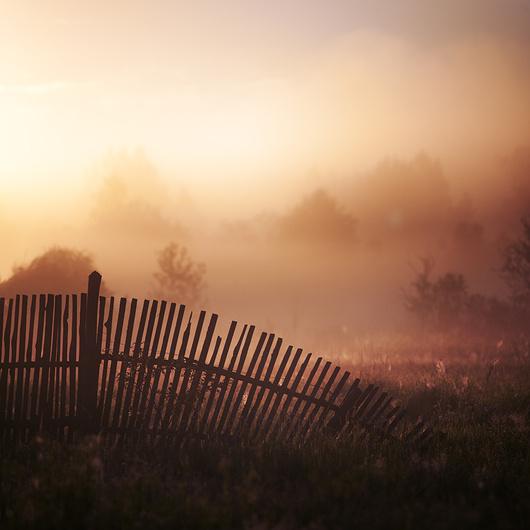 Художественные средства фотографии. 12 способов получить выразительный кадр. Часть 2