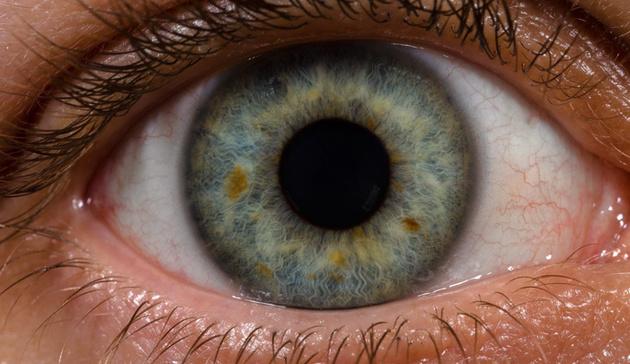 Человеческий глаз настолько чувствителен, что может увидеть единичный фотон