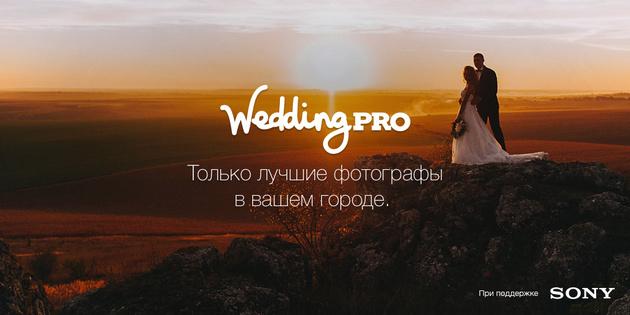 WeddingPro - открытие осени