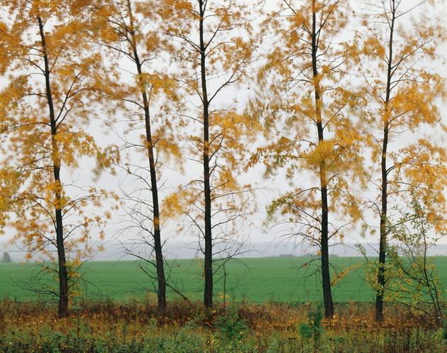 Ярослав Амелин проведет практический семинар по пейзажной съёмке