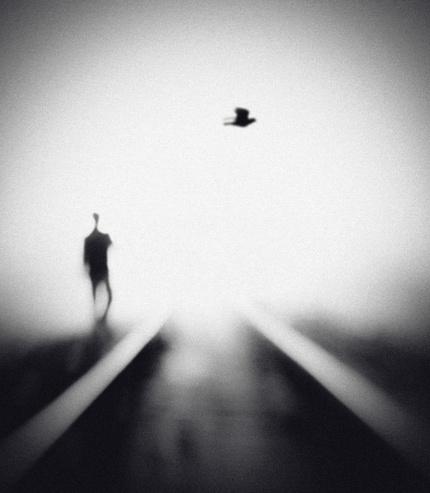 Поэзия в фотографии Хенгки Ли