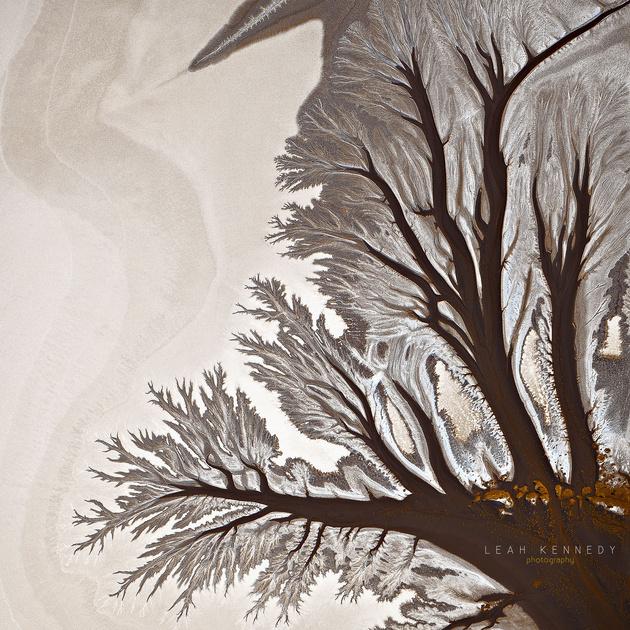 Абстрактные пейзажи Леа Кеннеди