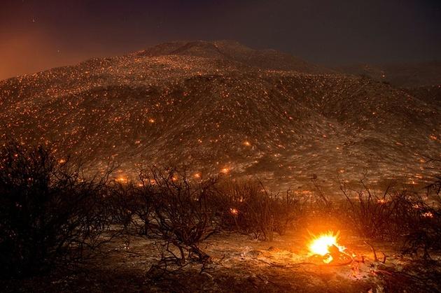 Фото дня: тлеющие угли после лесного пожара