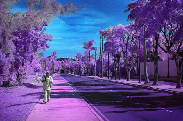 Джеймс Звалдо: я вижу мир в инфракрасном