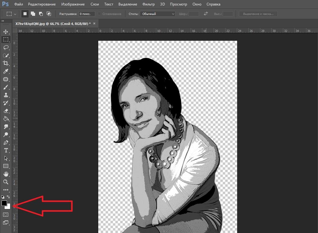 Как сделать фото в векторе