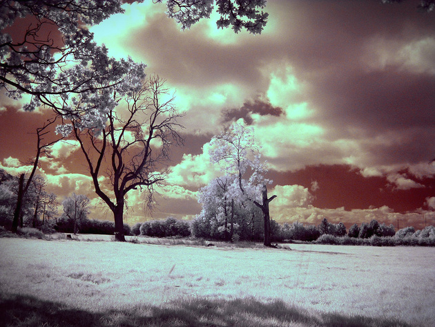 Infra Red Redux © photo zoom