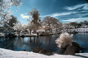 Chinese Garden, Singapore (Infra Red) © malcom tay
