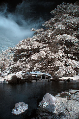 Chinese Garden, Singapore, Infra Red © malcom tay