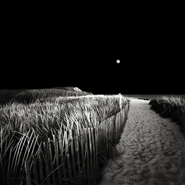 Moonrise, Chilmark, Massachusetts. © David Fokos