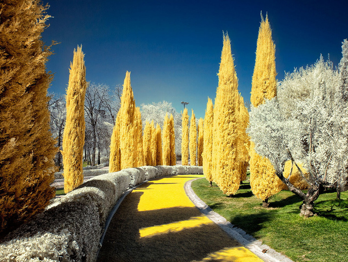 Follow the yellow brick road © Ӻotoαguαdo