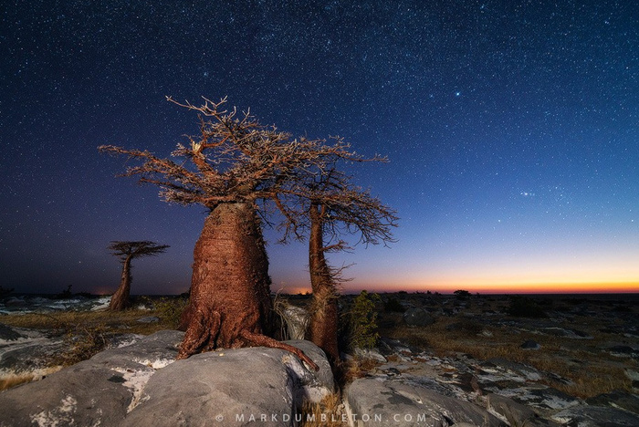 Fading Twilight © Mark Dumbleton