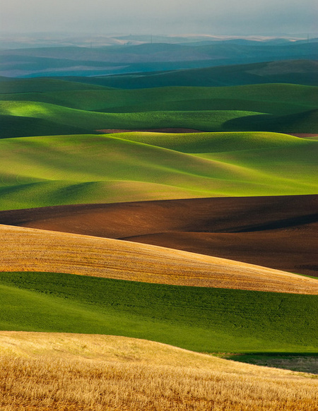 Palouse Layers. Palouse, Washington, USА