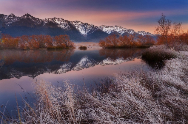 Frosted Over © Dylan Toh Marianne Lim