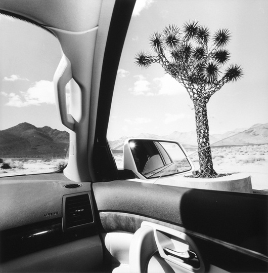 © Lee Friedlander, California, 2008