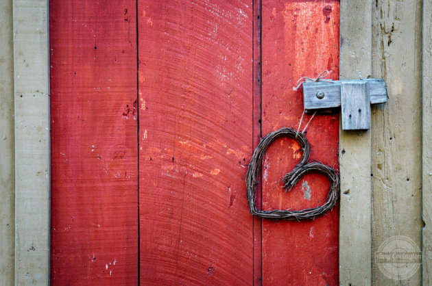 Red Door © Amy Covington