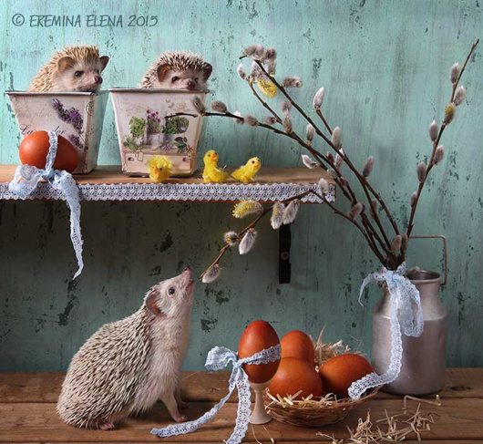 Happy Easter © Elena Eremina