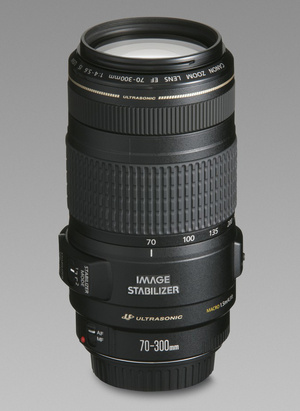 Canon EF 70-300 f/4-5.6 IS USM - ISO 100, F32, 1/60 с, 1.0 МБ
