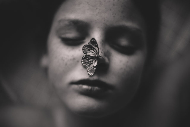 The Butterfly Pet © Kelly Tyack