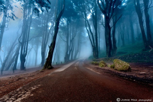 The road of kings © Jorge Maia. Португалия